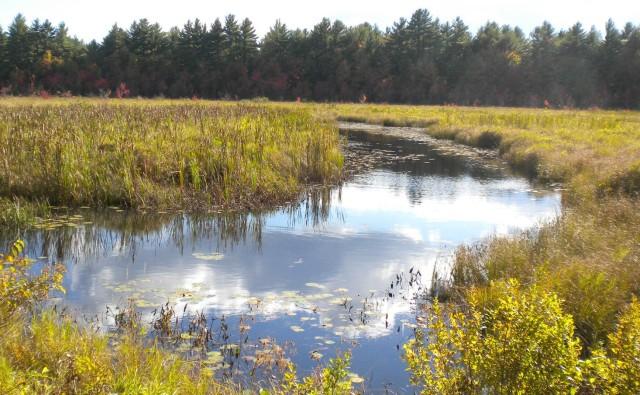 rock rec trail marsh
